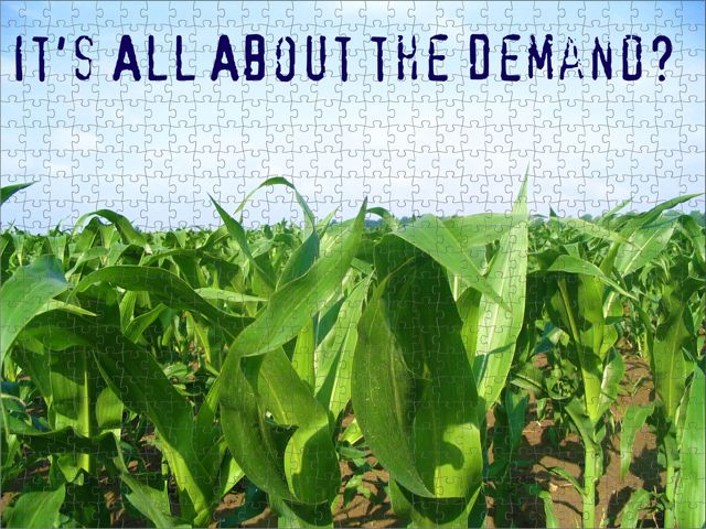 Corn Demandmed