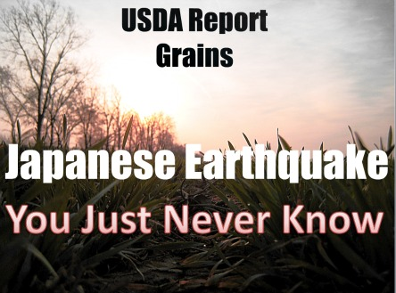 GrainsJapan