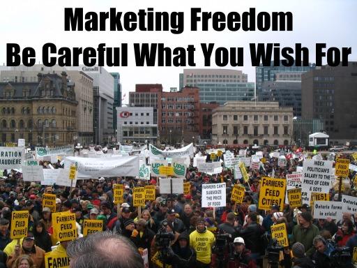 Market Freedom