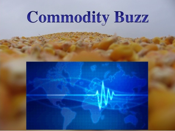 Commodity Buzz