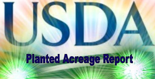 USDA Planted Acreage 510