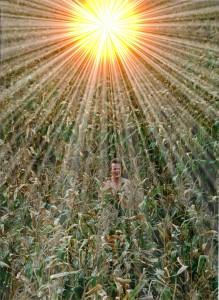 Phil in Corn