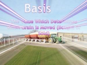 Grain-Basis1